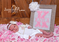 Miss Kayla - newborn session